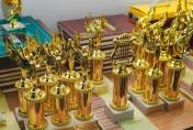 XVІІ Міжнародний фестиваль-конкурс студентської художньої творчості «БАРВИ ОСЕНІ – 2014»